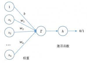 perceptron-activition